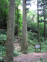 Kushiragawa6_021