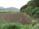 Kimotukigawa1_048