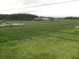 Kimotukigawa2_007