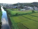 Kimotukigawa4_028