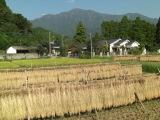 Kimotukigawa6_004