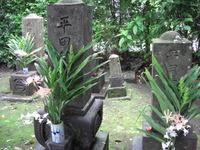 Hiratakehaka_003