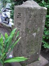 Hiratakehaka_004