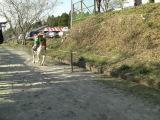 Sumiyosijinjayabusame_029