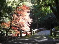 Momijiairasanryou_013
