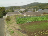 Kaminokawa_046