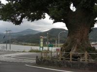 Ogawa1_029