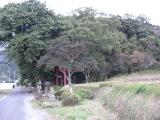 Ogawa1_037