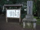 0319tairanosuemoto_004