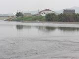 0531hishidagawa1_006