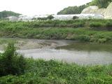 0531hishidagawa1_020