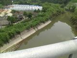 0531hishidagawa1_022