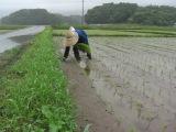 Ashinominato_013