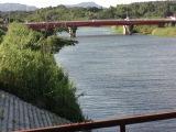 0815anrakugawa_043