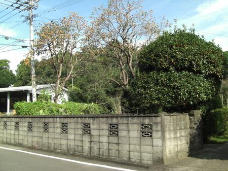 1011shuukakunoaki_003