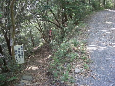 510kinturubashishouyouju_019