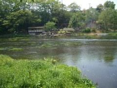 2253mishima_011_2