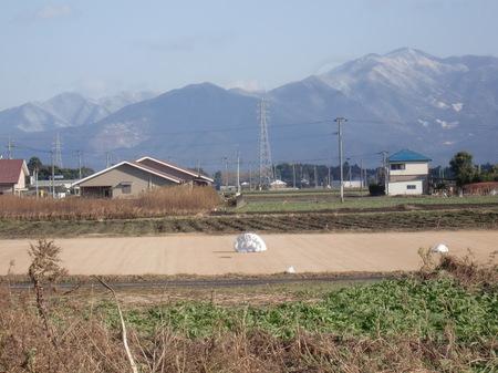 2311toshikoshinoyuki_005