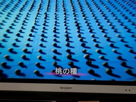 23123makimukuiseki_001