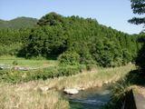 Kouyamagawa4_026
