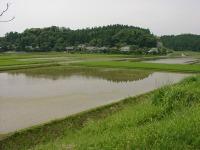 Ooairagawa2_006