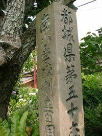 Ooairagawa2_008_1