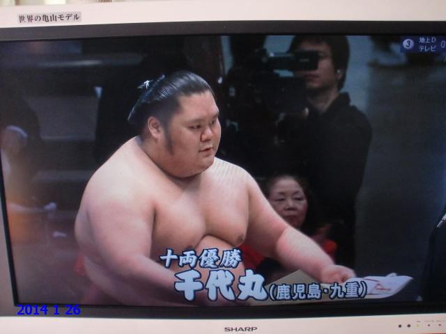 大相撲に明るい兆し: 鴨着く島